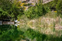 A beautiful clear water desert oasis in the middle of Whitewater Preserve in California stock images