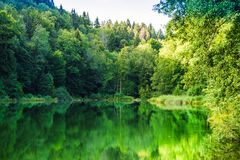 View on natural lake Egelsee by Bergdietikon next to Zurich - Switzerland stock photo