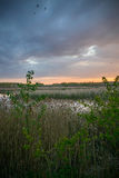 Natural lake with forest in the background and stormy clouds Stock Image