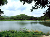 Natural lake in the forest Royalty Free Stock Photography
