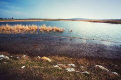 Natural lake landscape Royalty Free Stock Photo