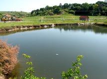 Natural lake in Ocna Sibiului, near Sibiu (Hermanstadt) Royalty Free Stock Photography
