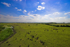 Natural Landscape. Beautiful sky and natural landscape Royalty Free Stock Photography