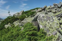 Natural landscape- alpine meadows Taganay. Mountain landscape- range, rocks, slopes of the Southern Ural. Alpine meadows in the national Park Taganay stock photos