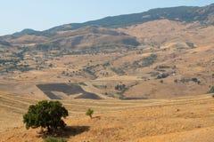 Natural landscape Stock Image