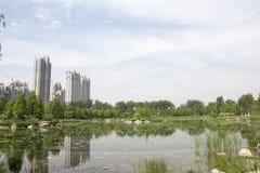 Natural landscape Stock Images