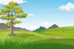 Natural Landscape with Big Tree on Green Hill and Pathway Towards Horizon. Vector illustration of beautiful green hills with big tree and pathway between. Summer Stock Photo