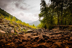 Natural Landscape Caught By The Storm Royalty Free Stock Image