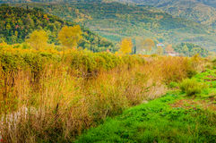 Natural Landscape Of Country Turkey Stock Image