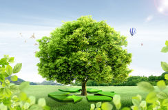 Natural landscape. ecological concept Stock Photo