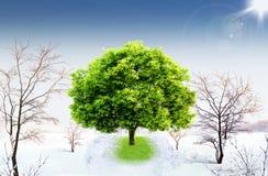 Natural landscape. ecological concept Stock Image