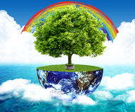 Natural landscape. ecological concept Stock Photography