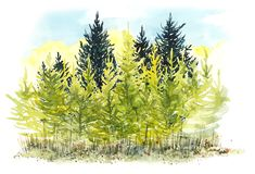 Natural landscape. Environmentally friendly natural autumn landscape. Watercolor hand painted illustration. royalty free stock photography