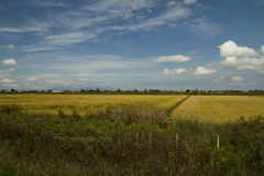 Natural landscape, fields and village - Stock Image Royalty Free Stock Image