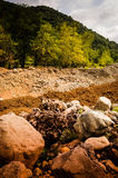 Natural Landscape With Golden Colors. Natural landscape located in Marmara region of the country Turkey with trees, rocks, stones and hills with golden colors Royalty Free Stock Photos