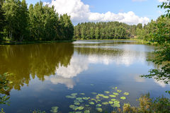 Natural landscape with a lake. Royalty Free Stock Photos