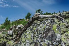 Natural landscape- alpine meadows Taganay. Natural landscape- mountain rocks, slopes of the Southern Urals. Alpine meadows in the national Park Taganay royalty free stock photos