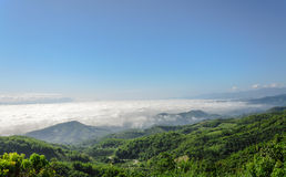 Natural landscape of mountains and sea of mist in the winter season,Thailand Royalty Free Stock Images