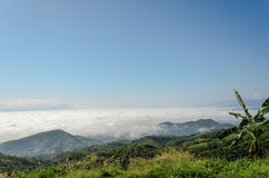 Natural landscape of mountains and sea of mist in the winter season,Thailand Stock Images