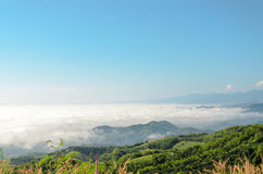 Natural landscape of mountains and sea of mist in the winter season,Thailand Royalty Free Stock Photography