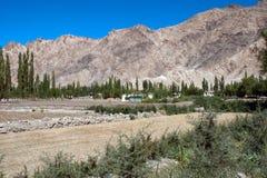 natural landscape at nimo village j&k india