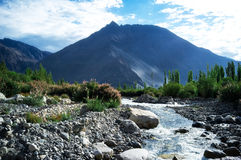 Natural landscape in Nubra valley Royalty Free Stock Images