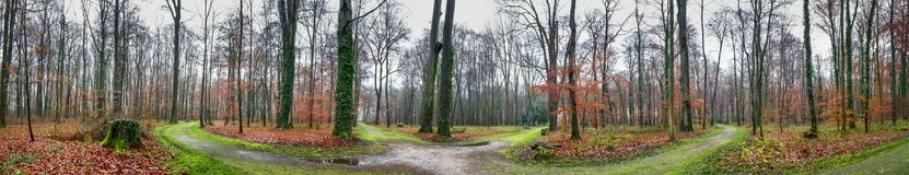 Natural landscape, panorama - park with trees and paths next to the Augustusburg and Falkenlust Palaces, city of Bruhl. North Rhine-Westphalia, The Germany Royalty Free Stock Image