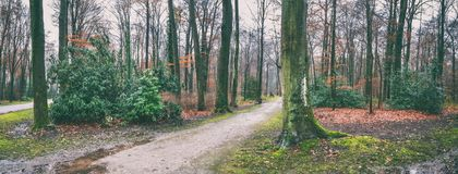 Natural landscape - park with trees and paths next to the Augustusburg and Falkenlust Palaces, city of Bruhl. North Rhine-Westphalia, The Germany Stock Photography