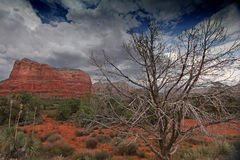 Natural landscape with red rocks near Sedona, Arizona, USA Royalty Free Stock Photos
