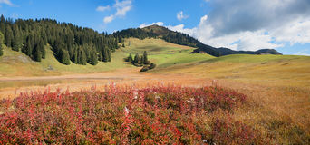 Natural landscape stelsersee in autumnal colors Royalty Free Stock Photo