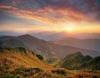 Natural landscape in the summer time Stock Photo