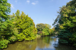 Natural landscape with trees and a river Stock Images