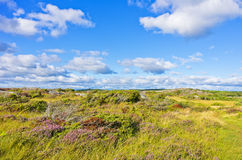 Natural Landscape Stock Photography