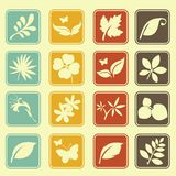 Natural leafs icon set basic style Stock Photo