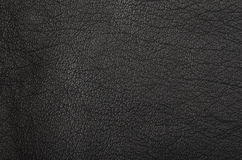 Natural leather background Stock Image