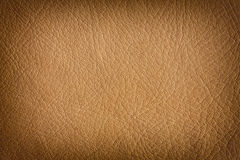 Natural leather background royalty free stock photos