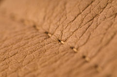 Natural leather macro shot Royalty Free Stock Image
