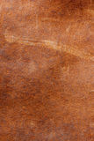 Natural leather skin Stock Photography