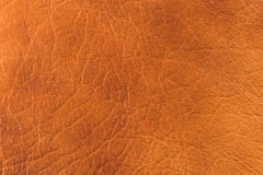 Natural leather texture Royalty Free Stock Photos