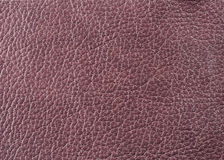 Natural leather texture Stock Photos