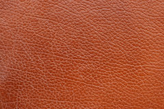 Free Natural Leather Texture Royalty Free Stock Photos - 7954588