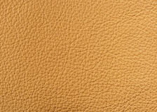 Free Natural Leather Texture Stock Image - 8044761