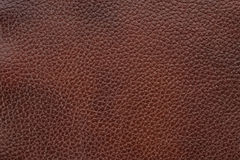 Free Natural Leather Texture Stock Images - 8044774