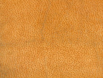 Natural leather texture. Royalty Free Stock Photography
