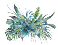 Natural leaves exotic watercolor greeting card Stock Image