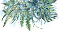 Natural leaves exotic watercolor greeting card Stock Photos