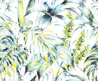 Natural leaves exotic watercolor seamless pattern. Green tropical leaves, fern, dense jungle, Hand painted botanical summer illustration on white background Stock Photo