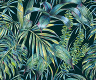 Natural leaves exotic watercolor seamless pattern Royalty Free Stock Photo