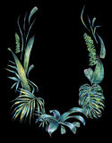 Natural leaves exotic watercolor wreath Royalty Free Stock Images