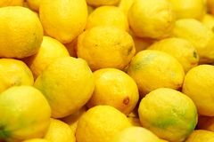Natural lemon  for juice Royalty Free Stock Images